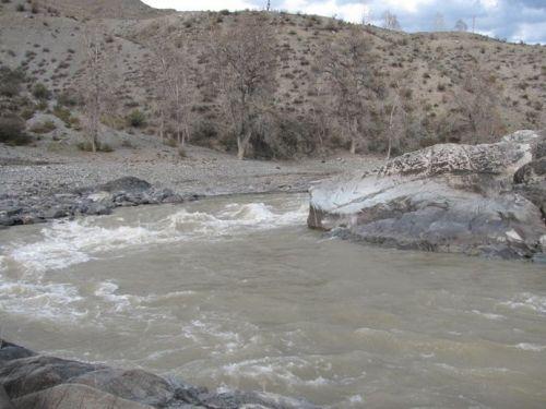 Подробнее: Река Чуя (Алтайский край)