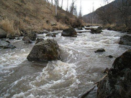 Подробнее: Река Улус-Черга (Алтайский край)