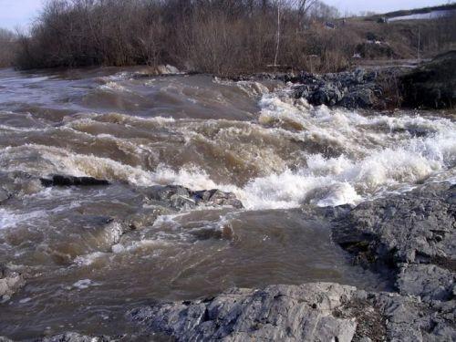Подробнее: Река Шипуниха (Новосибирская область)